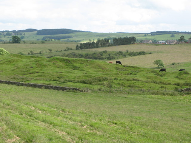 Pastures near Manor Farm