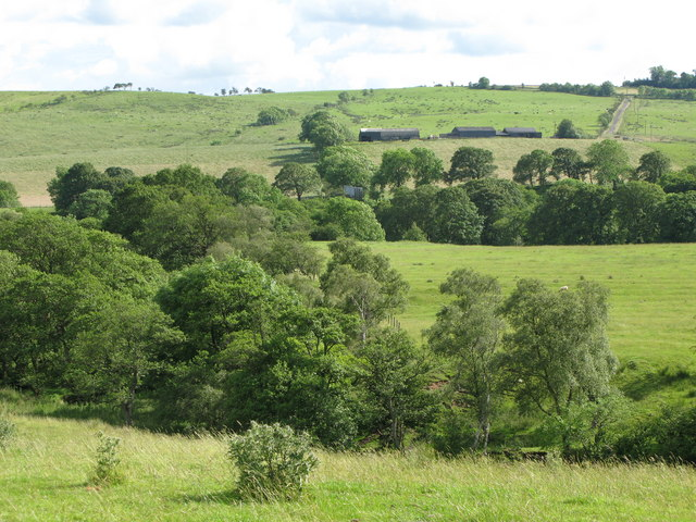 The valley of Houxty Burn