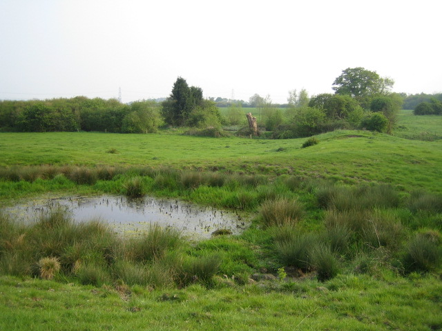 Pond bay near Greatmoor