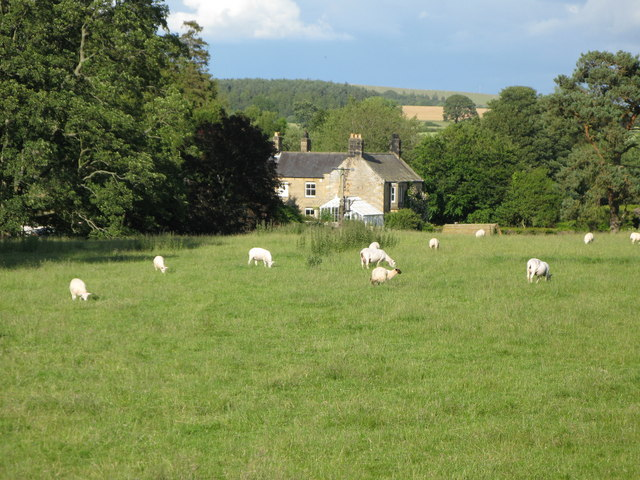 Pasture, woods and cottage at Park End
