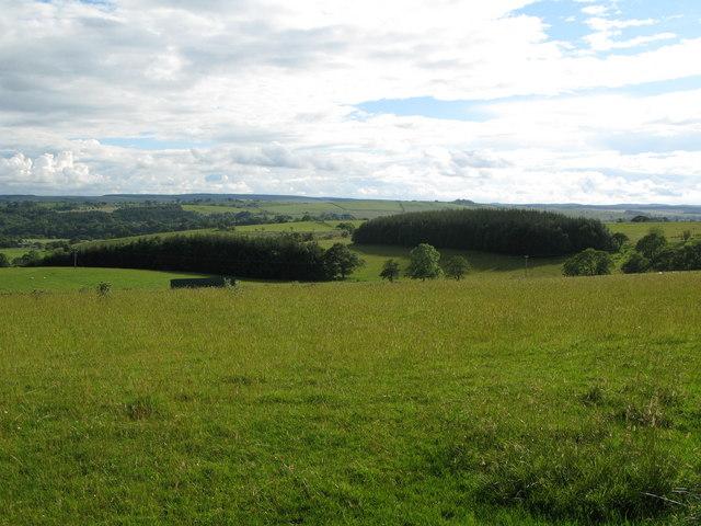 Pastures and plantations below Anton Hill