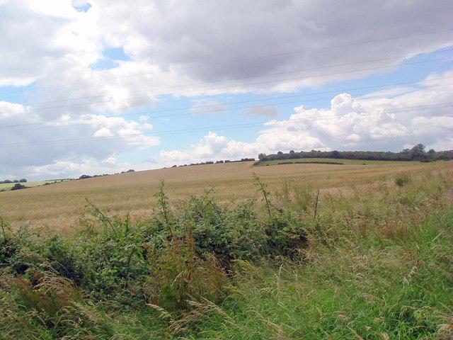 Looking towards Lumber hill