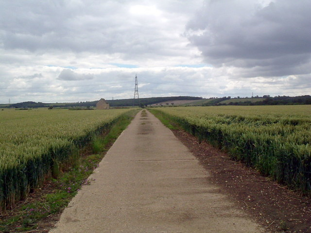 Footpath through farm field
