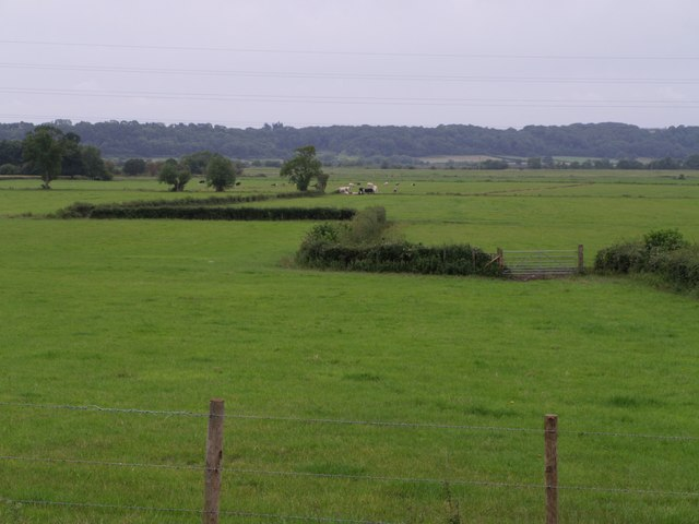 Middle Moor