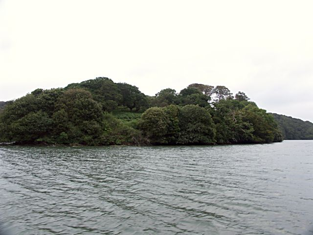 Wooded promontory on the River Fal
