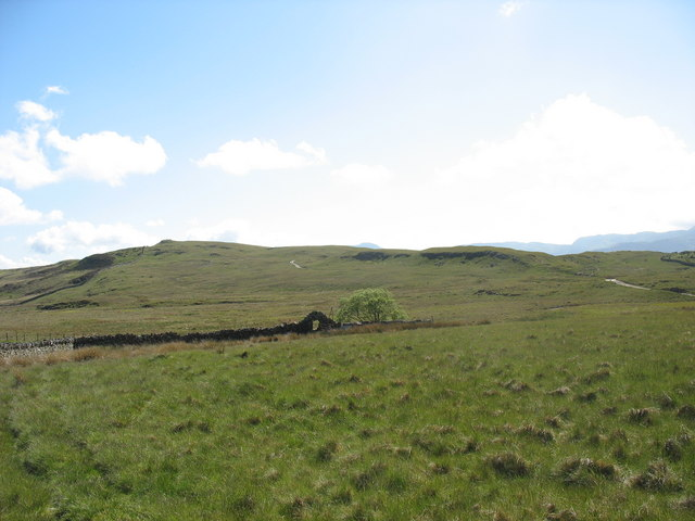 View from Dolddinas across rough grazing to the track leading to Trawsfynydd