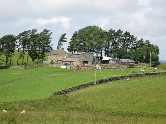 Catless Farm