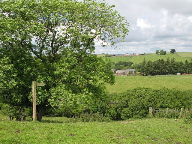 Footpath to Longlee Farm
