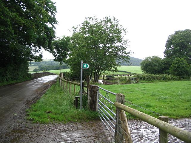 Road Bridge Over Afon Brân