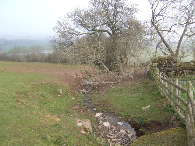 Spring below Upper Castleton Farm