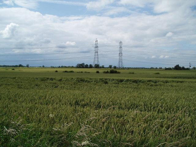 The Wheat fields of Beltoft Grange