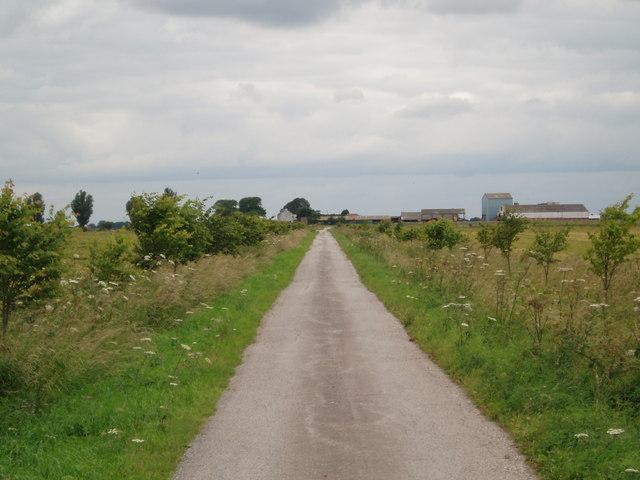Farm lane to Poplars Farm