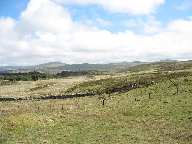 Bogland south of the upper Afon Prysor