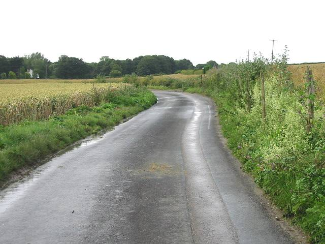 View along Crooked S Road towards Ripple