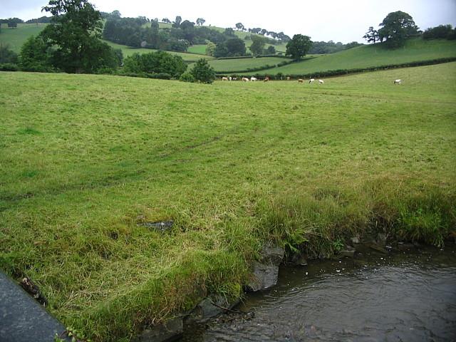 Fields rising up To Pentir-bâch