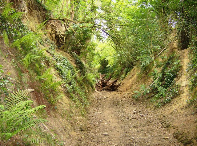 Hick's Lane, sunken lane