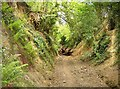 ST6429 : Hick's Lane, sunken lane by Graham Horn