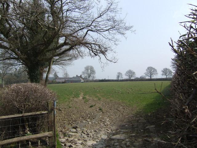 Across fields to Bythel