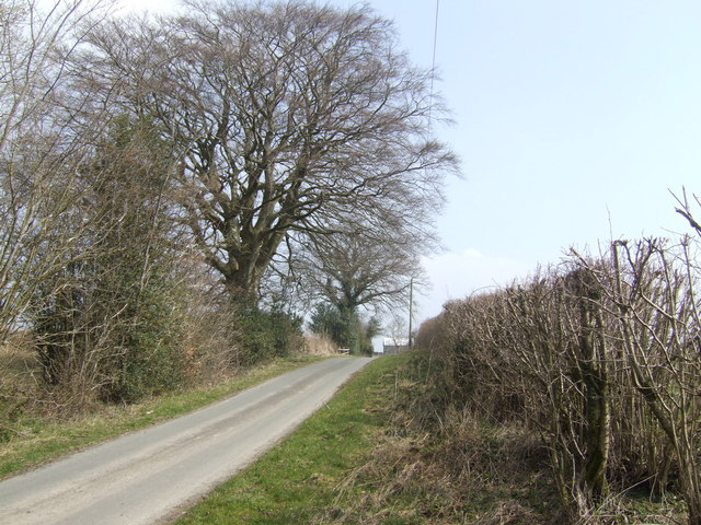 Lane at Penrhoel