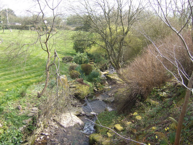 Border brook at Rhydspence
