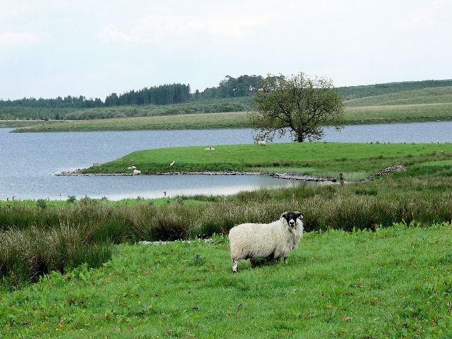 Loch Urr