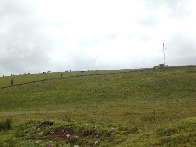 Field near Drumhumphry