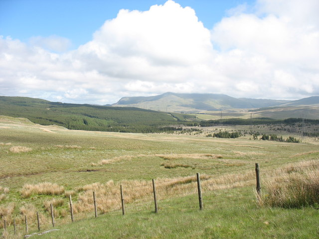 Cors-y-barcud and the Nant-lladron Forest with Arenig Fawr in the background