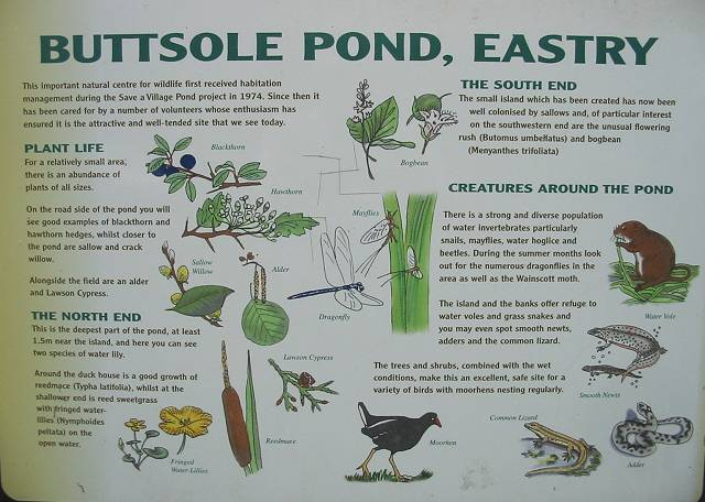 Information sign for Buttsole Pond