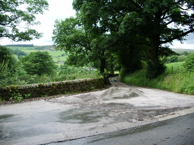 The road to Readwood