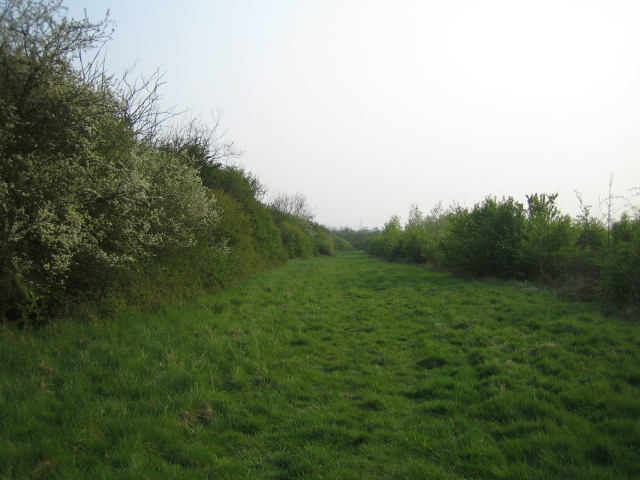 Bridleway near Prune Farm Cottages, Edgcott 2