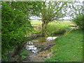 SP6921 : River Ray near Prune Farm Cottages by Andy Gryce