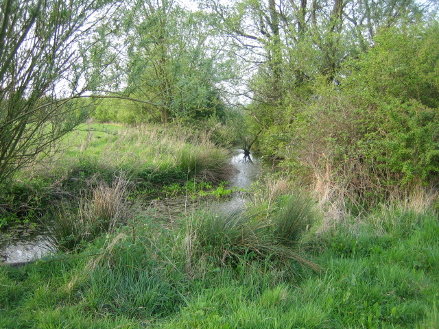 Stream near Prune Farm Cottages