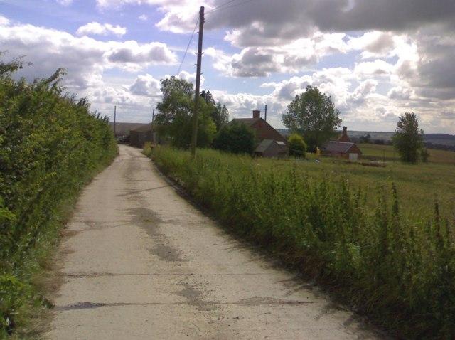 Approaching America Farm
