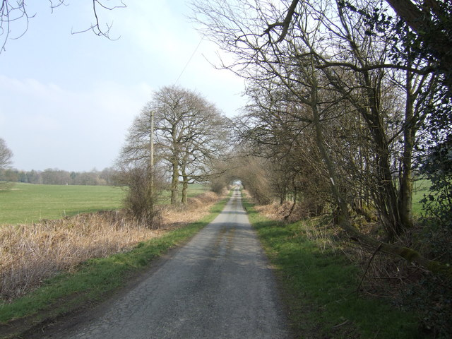 Lane east towards Brilley