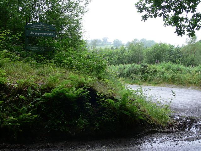 Main Entrance To Allt Llwynywormwood