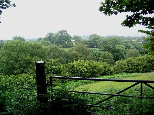 Upper River Valley Of Afon Clydach