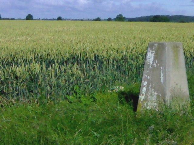 Triangulation Pillar looking North-west