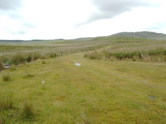 Grazing land near Lochenkit