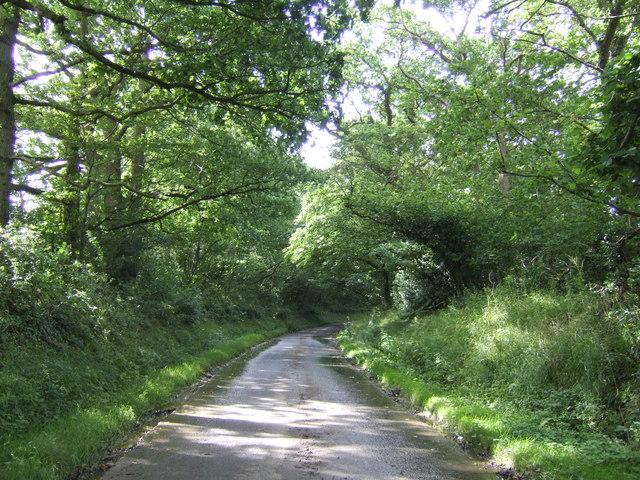 Pitymoor Lane