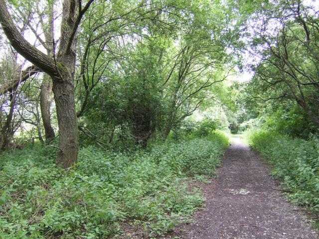 Monarch's Way and Test Way