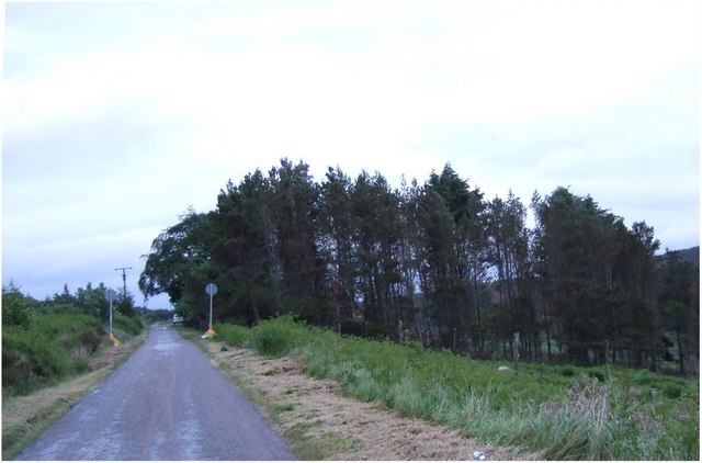 Road down Dunrobin Glen