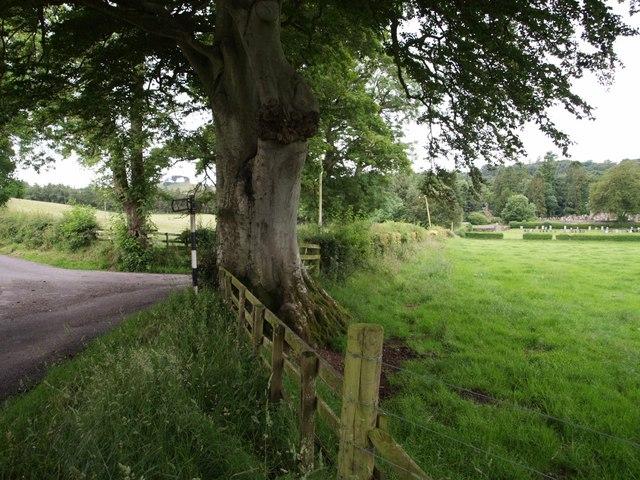Junction near Kirkbank
