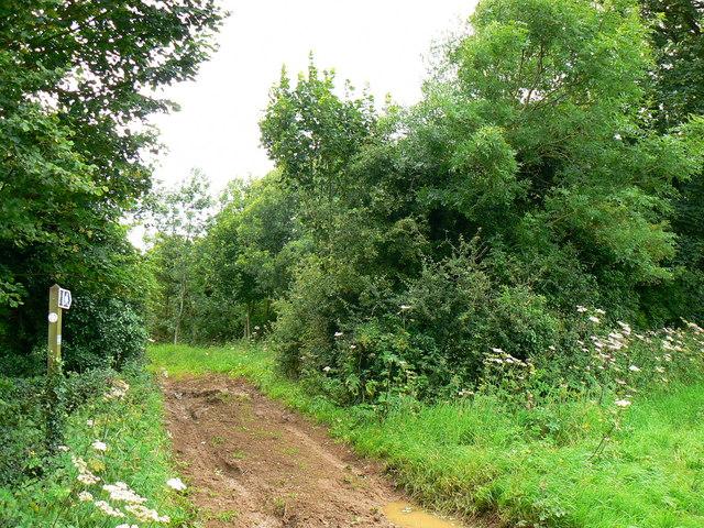 Bridleway near Badminton