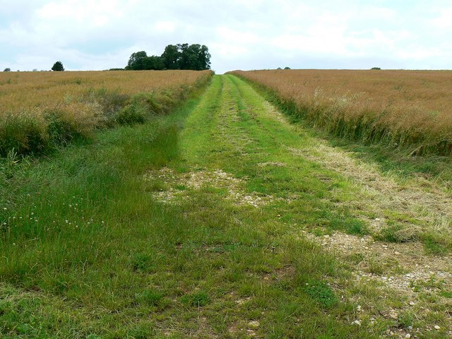 Bridleway near Little Badminton