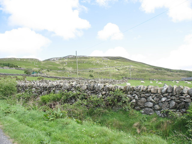 The slopes of Moel y Ci from the Rhiwlas road