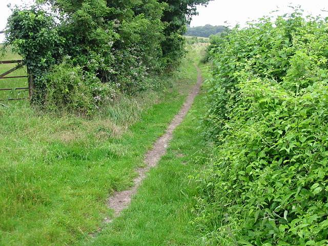 View along footpath at the end of Thornton Lane