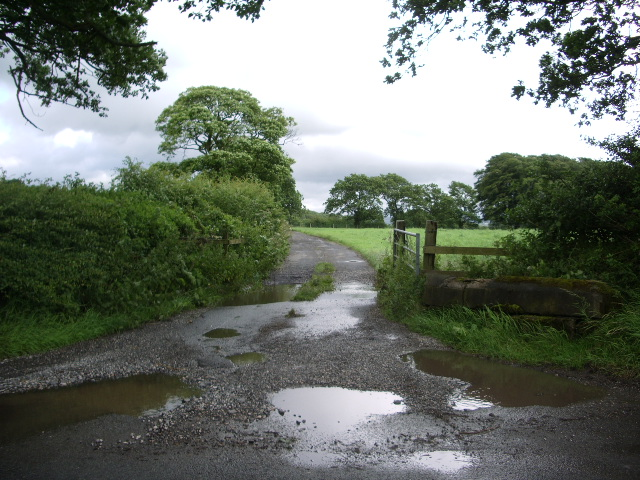 The road to Maiden House Farm