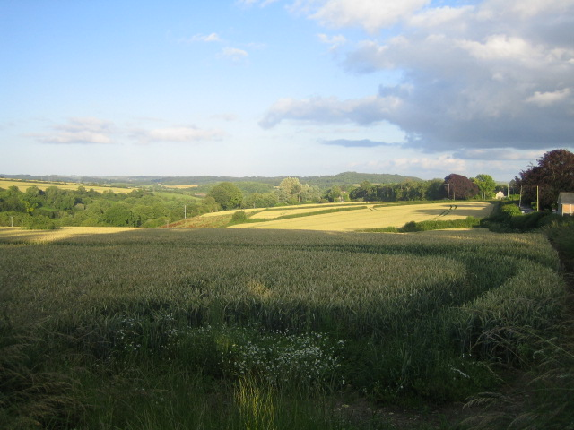 Fields near Hindon Lane, Tisbury