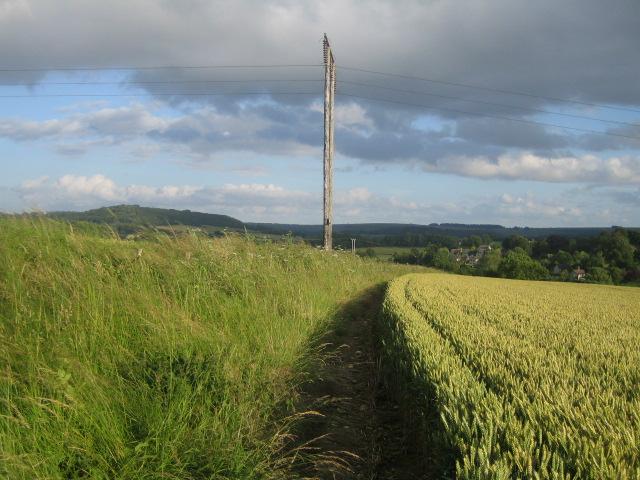 Footpath near Tisbury