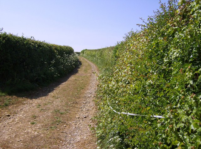 Macmillan Way near Stafford Green Farm